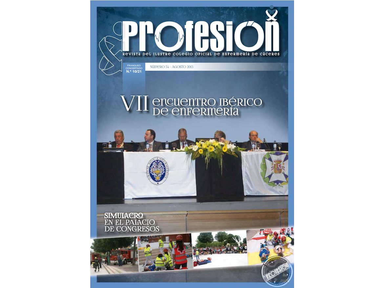 Revista Profesi...