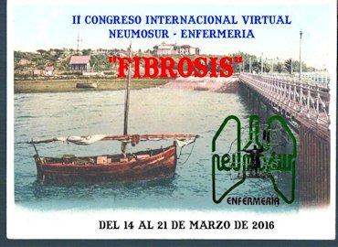 II Congreso Internacional Virtual Neumosur - Enfermería
