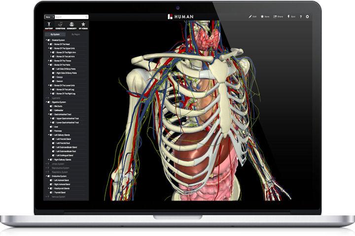 Colegio de Enfermería de Cáceres | Atlas de Anatomía Humana en 3D