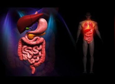 Taller de atención de Enfermería al paciente con trastornos digestivos