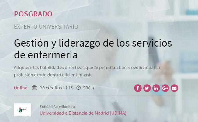 Experto Universitario - Gestión y liderazgo en los servicios de Enfermería