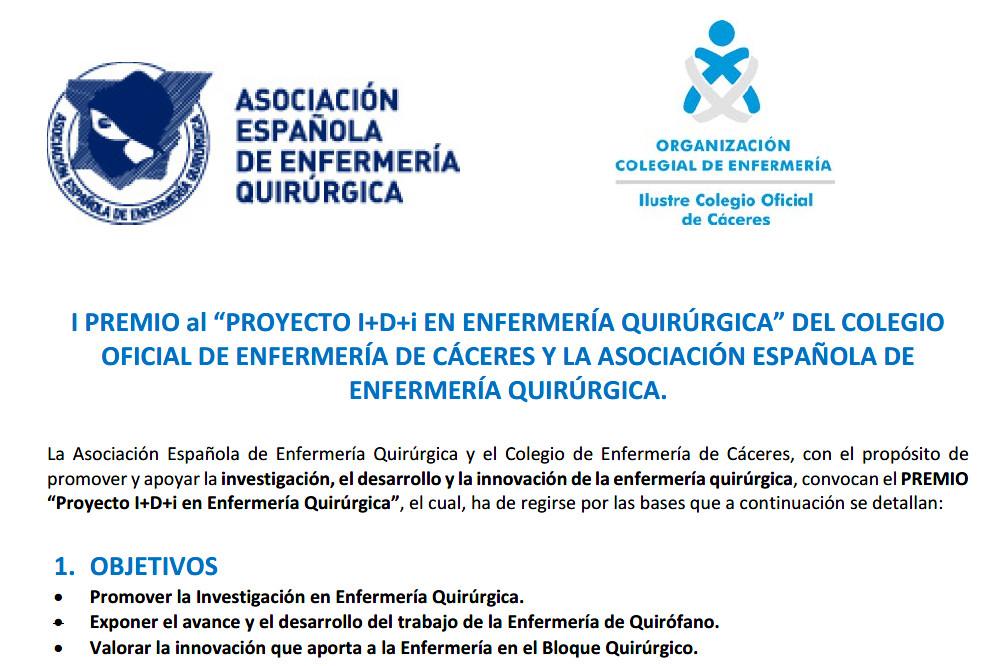 Premio Investigación AEEQ